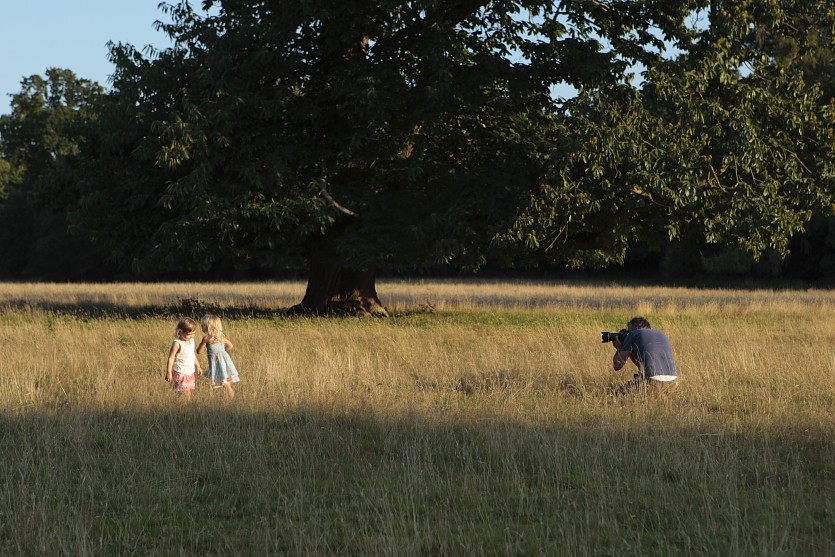 Sennicotts Regency Villa and Sussex Parkland