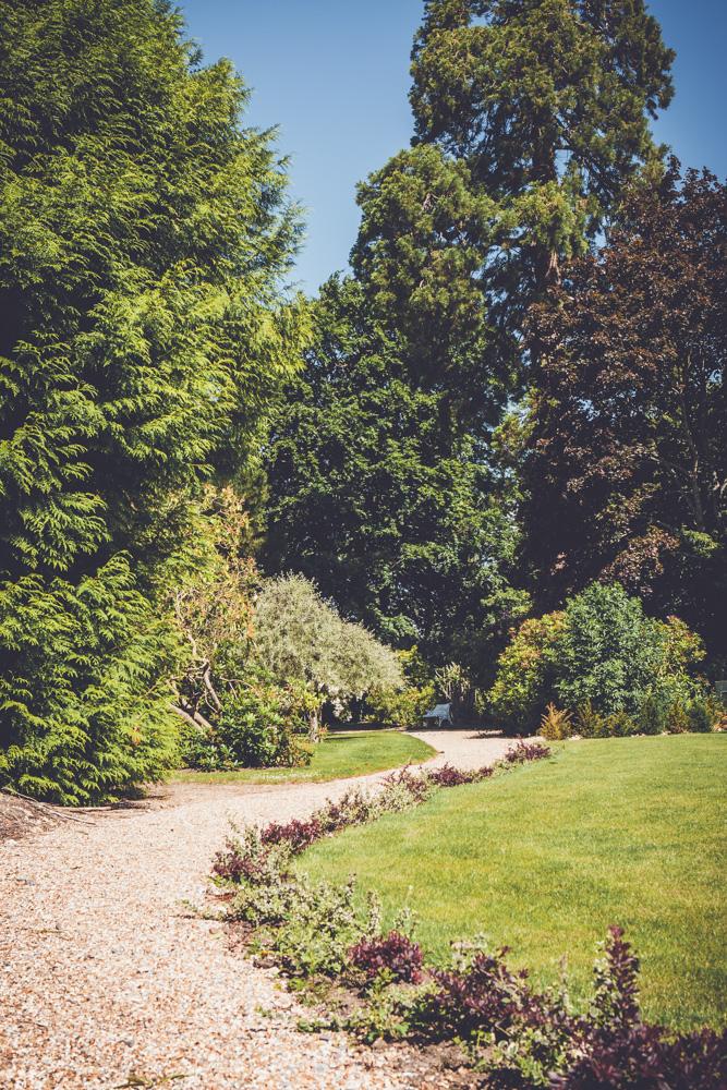 _A5K1134June 15, 2017 Vintage Garden