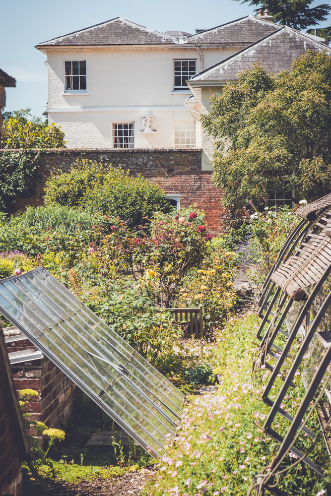 _A5K1175June 15, 2017 Vintage Garden