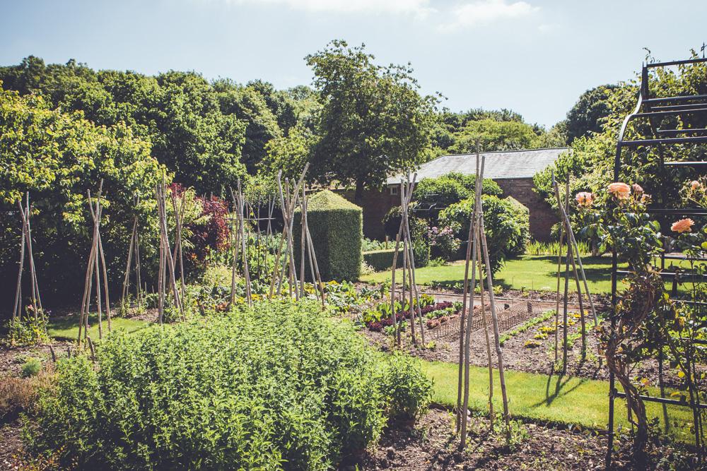 _A5K1176June 15, 2017 Vintage Garden