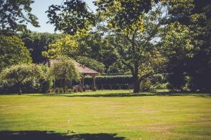 _A5K1142June 15, 2017 Vintage Garden