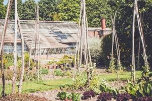 _A5K1163June 15, 2017 Vintage Garden