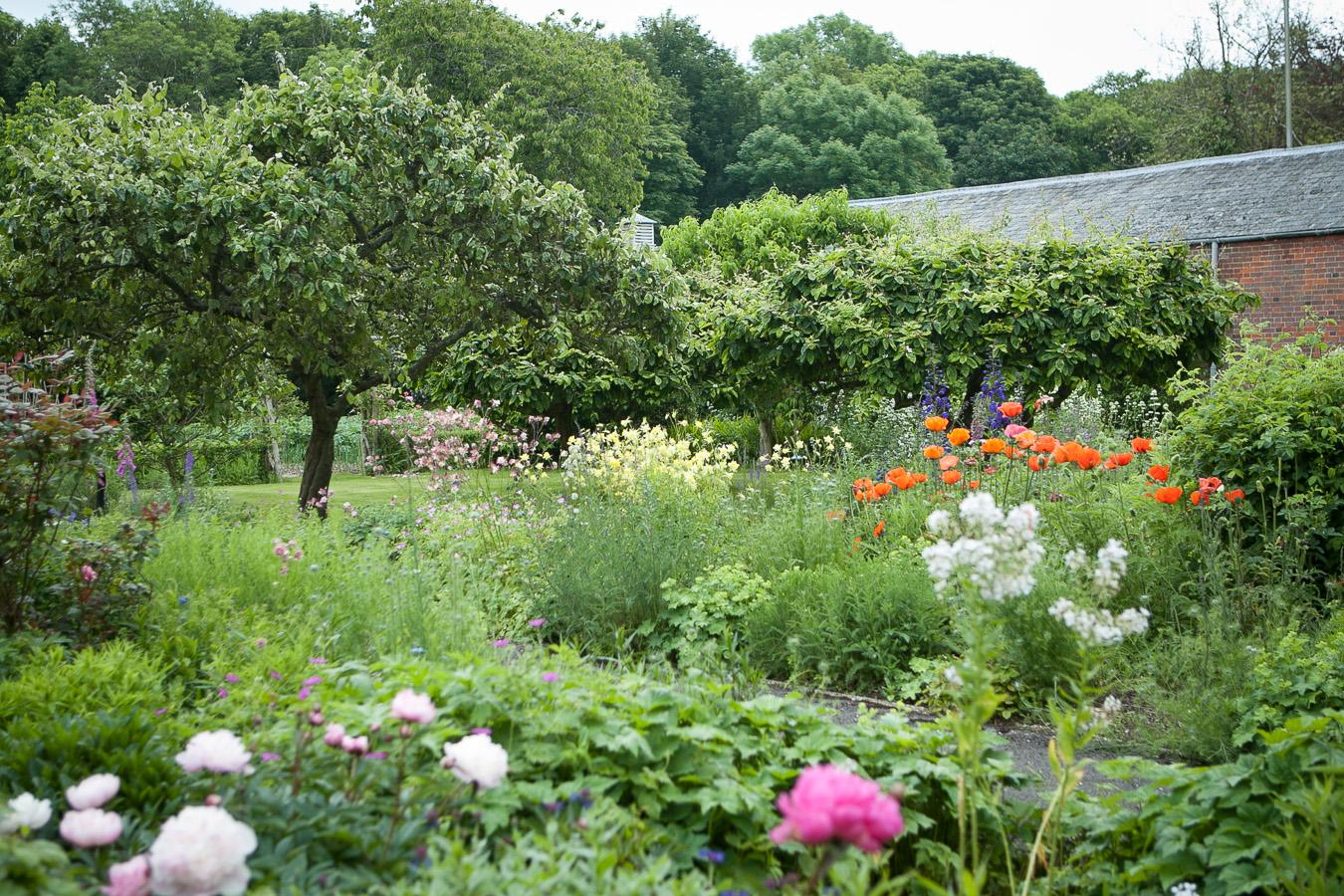 garden-6966