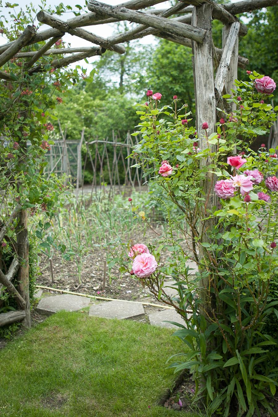 garden-6969