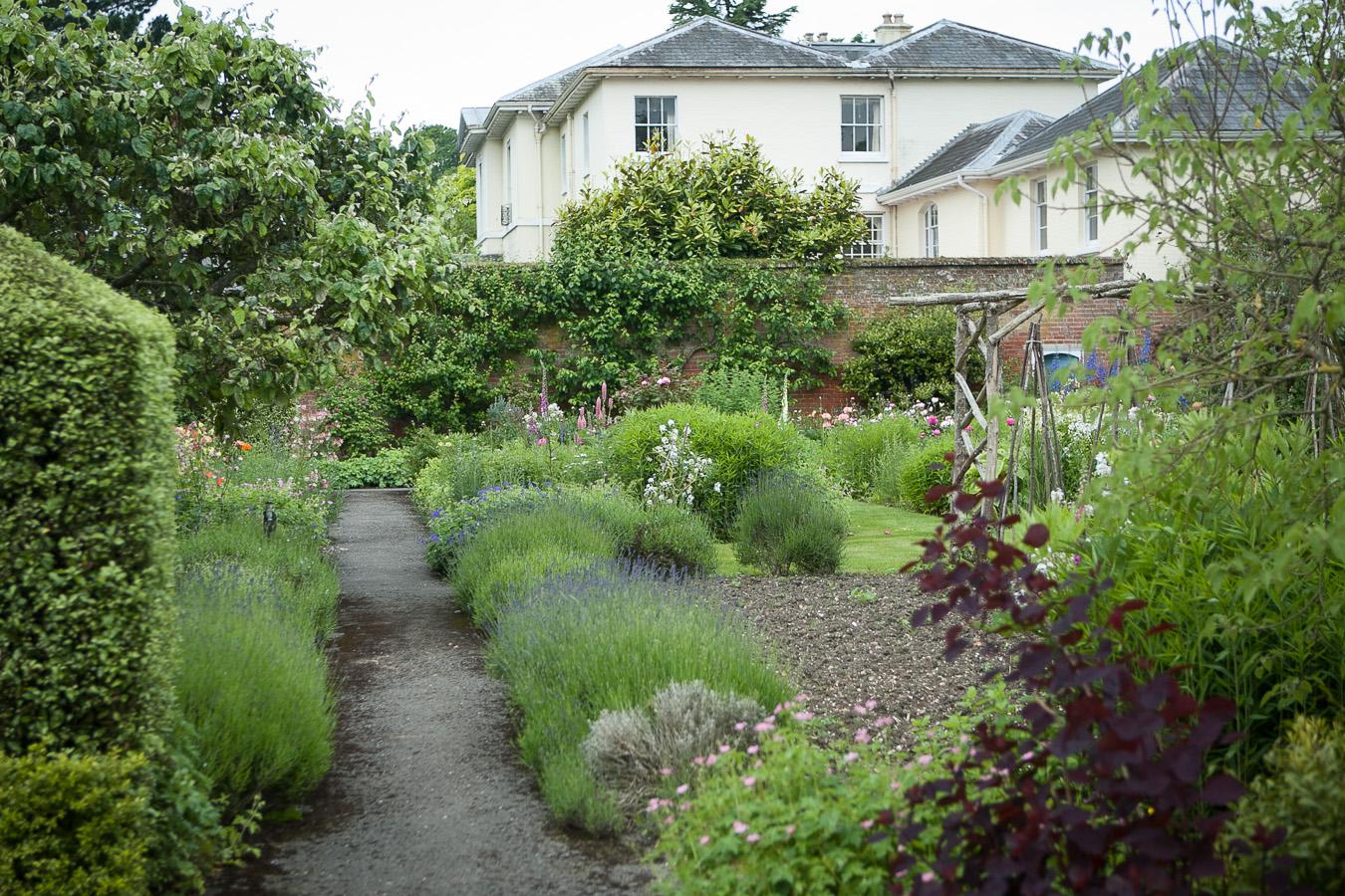 garden-6976