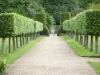 garden-6960