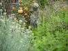 garden-6963