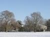 Parkland Snow Pamorama