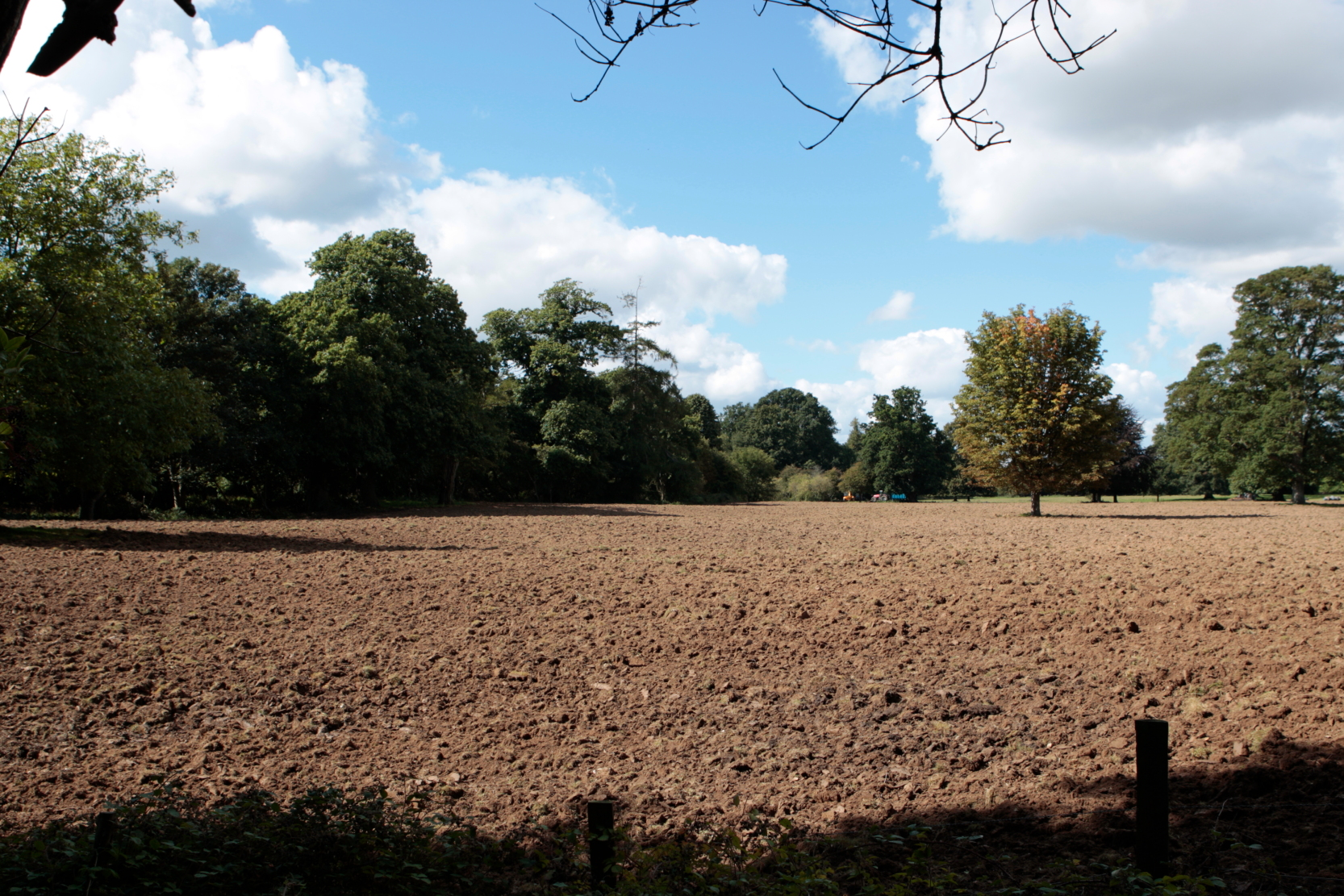 ploughing and re-seeding the parkland - sept 2010